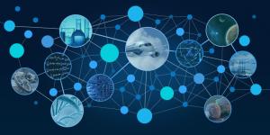 Региональный конкурс проектов фундаментальных научных исследований